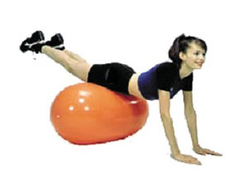 Therapy Balls Exercise Ball Yoga Ball Massage Ball